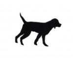 DogSilhouette